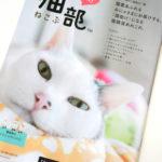 【フェリシモ】今月号のチラシで気になった商品。フェリシモ猫部って!?